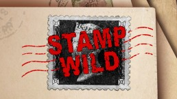 Stamp wild slot game online more info Green jade games